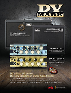 DV Mark Ad